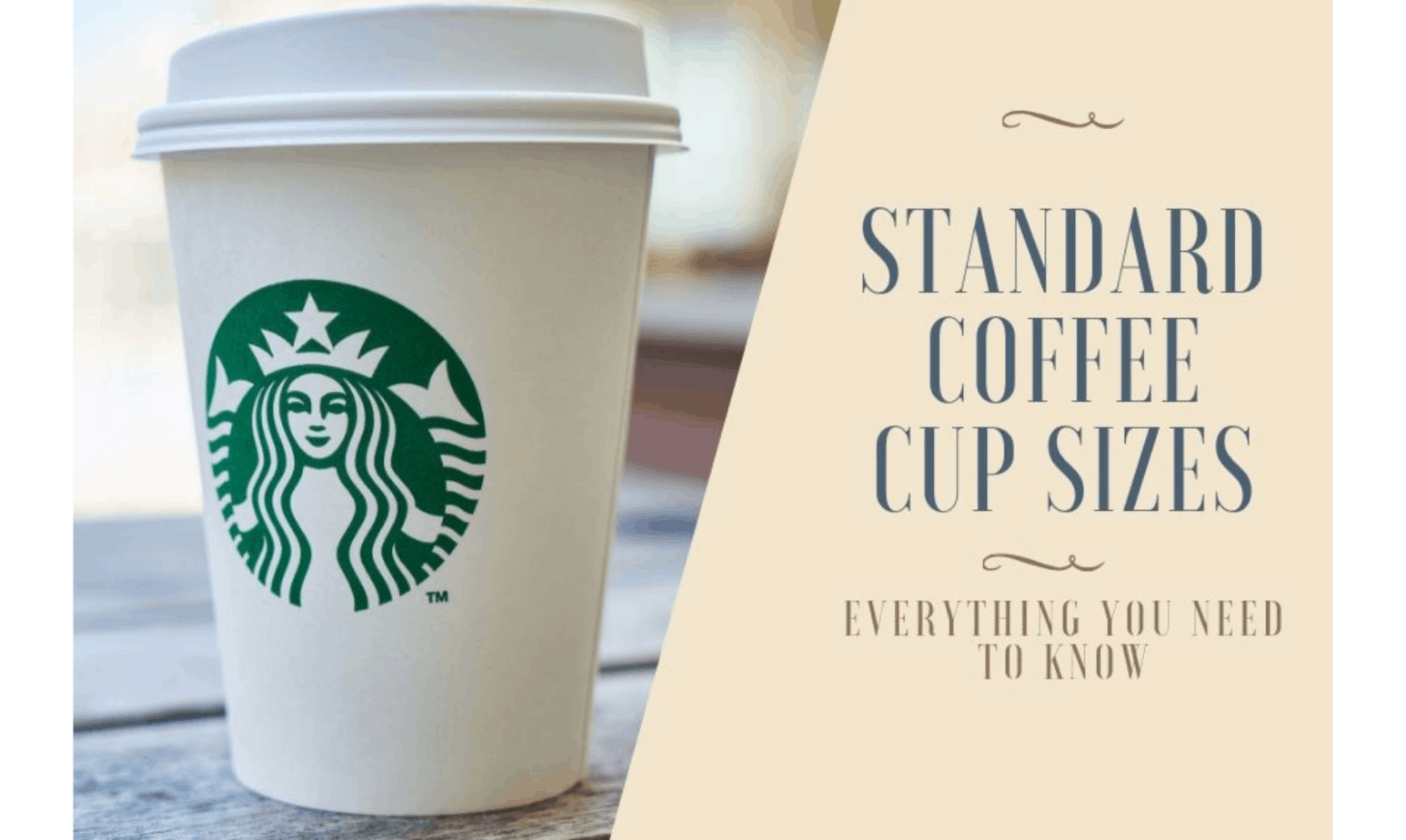 Standard Coffee Cup Sizes