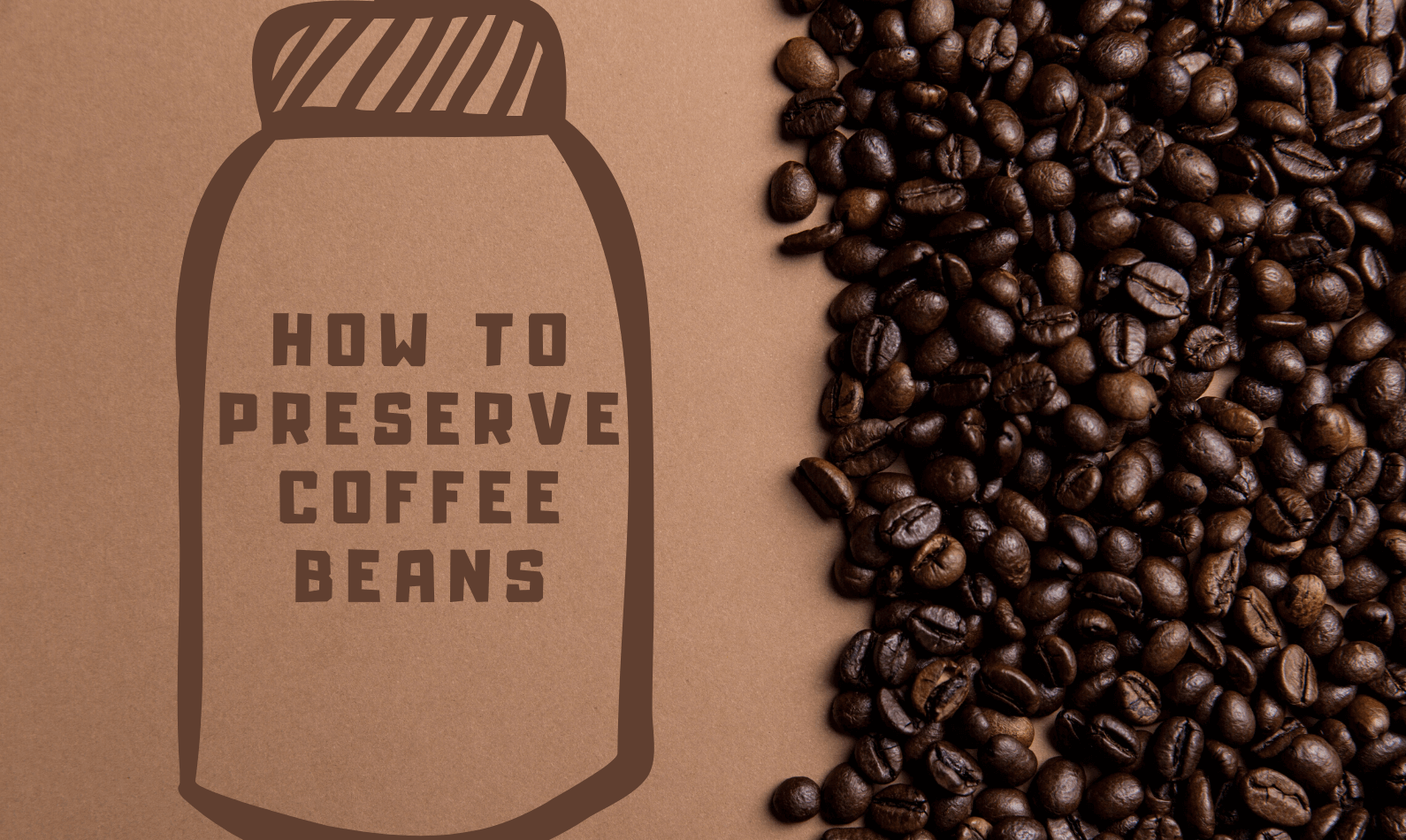 How to Preserve Coffee Beans