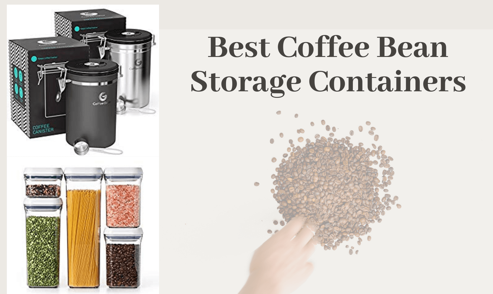 Best Coffee Bean Storage Containers